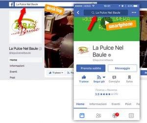 la pulce nel baule - cerca pagina facebook
